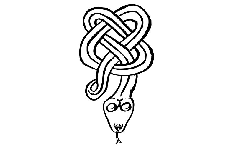 A snake in a Celtic knot